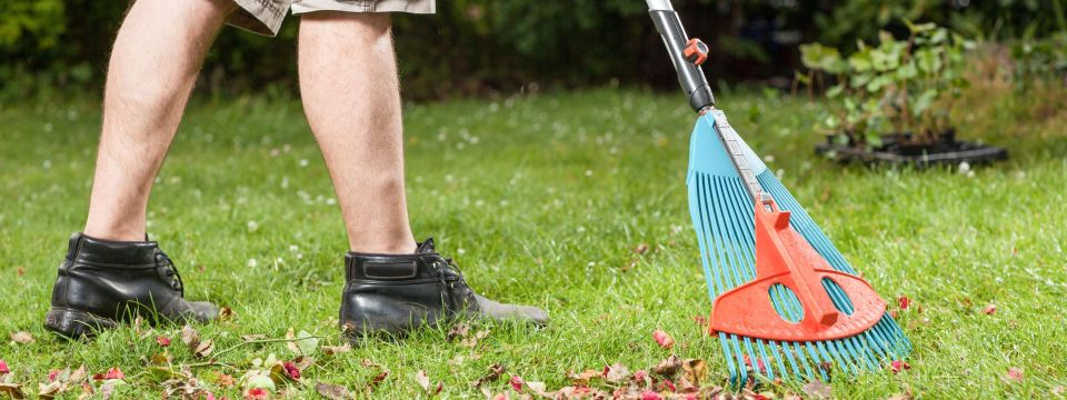 FALL OR SPRING CLEANUP