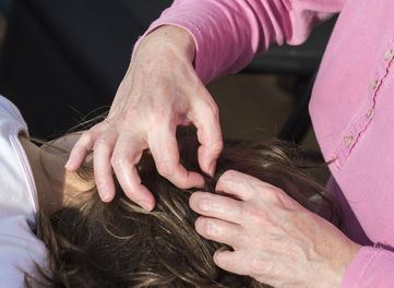 LICE REMOVAL SERVICES